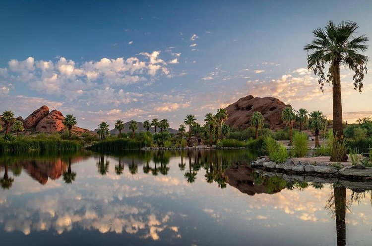 5 must see places in Phoenix, Arizona